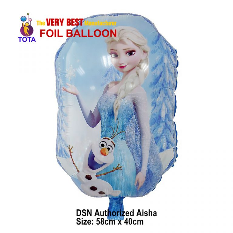 DSN Authorized Aisha